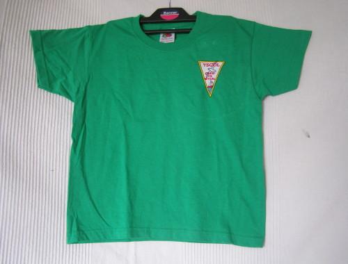 Craig yr Wylfa - T Shirt Green
